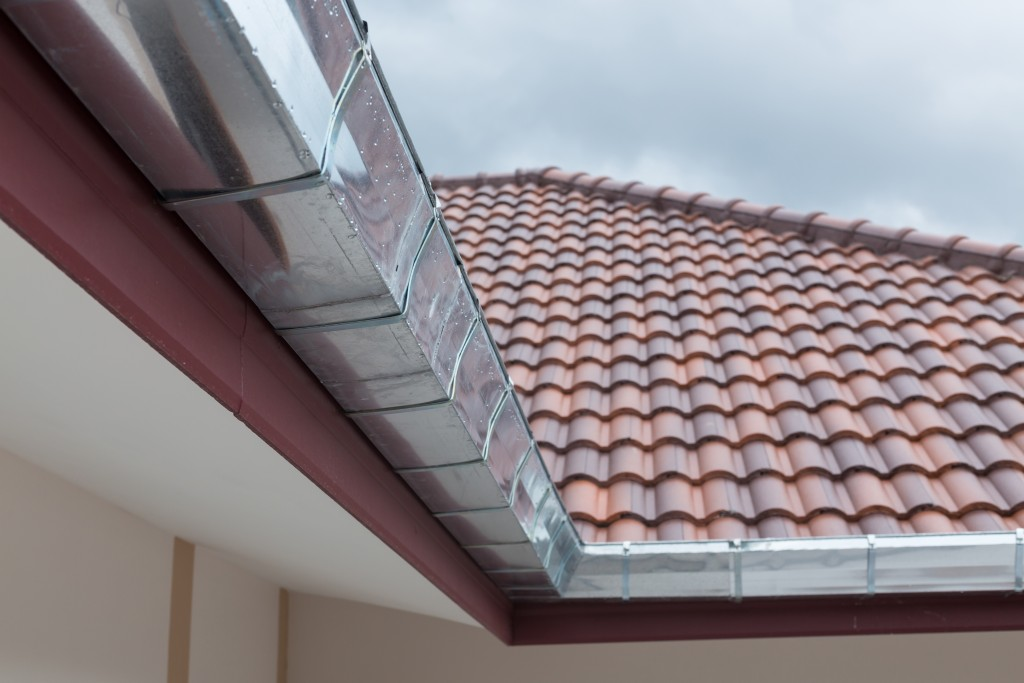gutters of roof