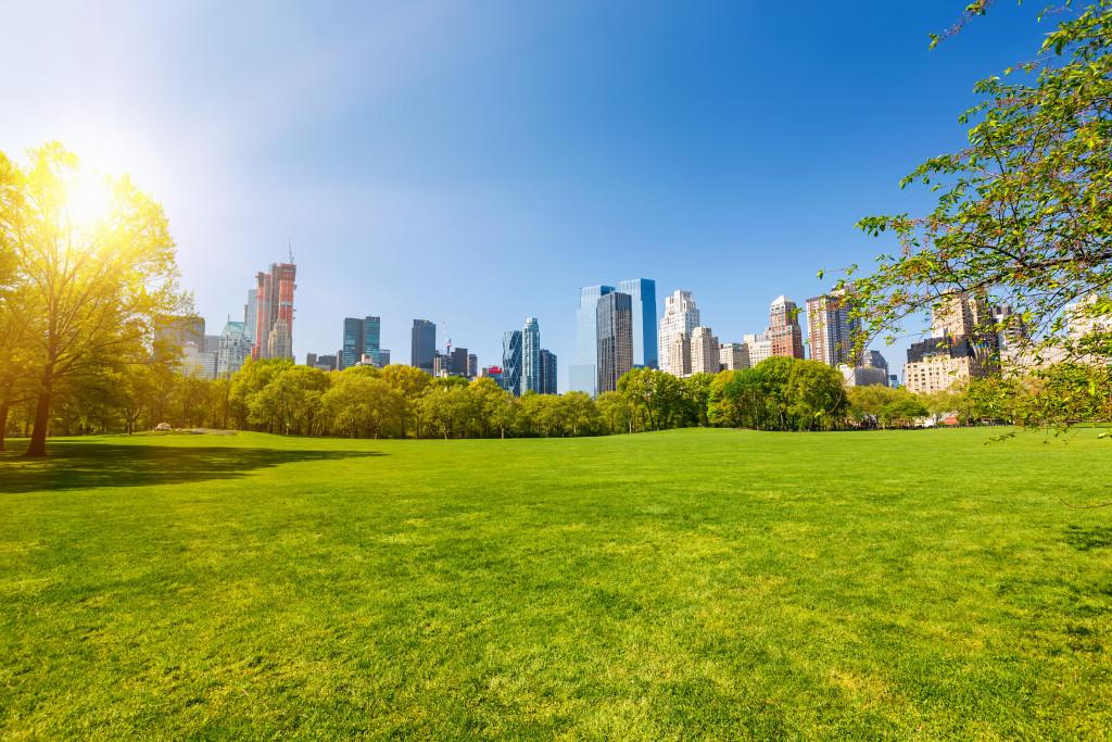 central park concept