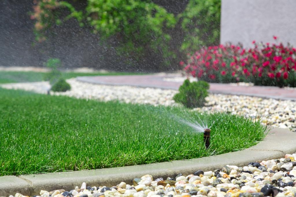sprinkler on a lawn