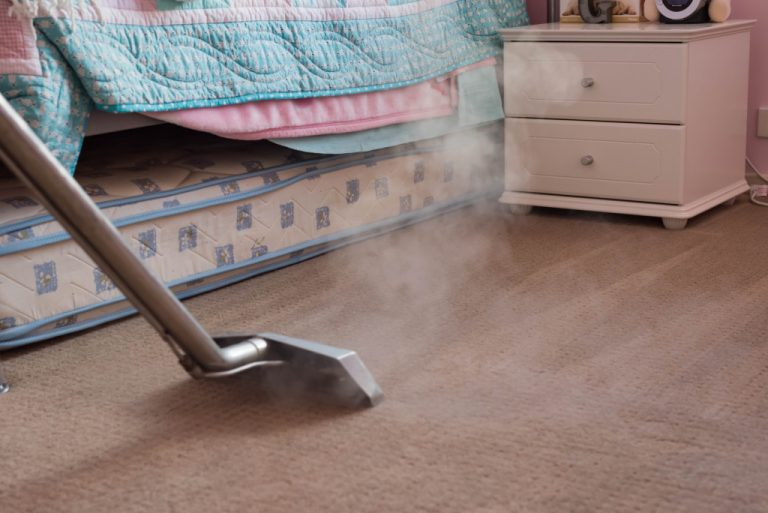 steam cleaning the carpet